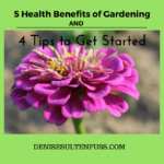 Health Benefits of Gardening and Tips to Get Started