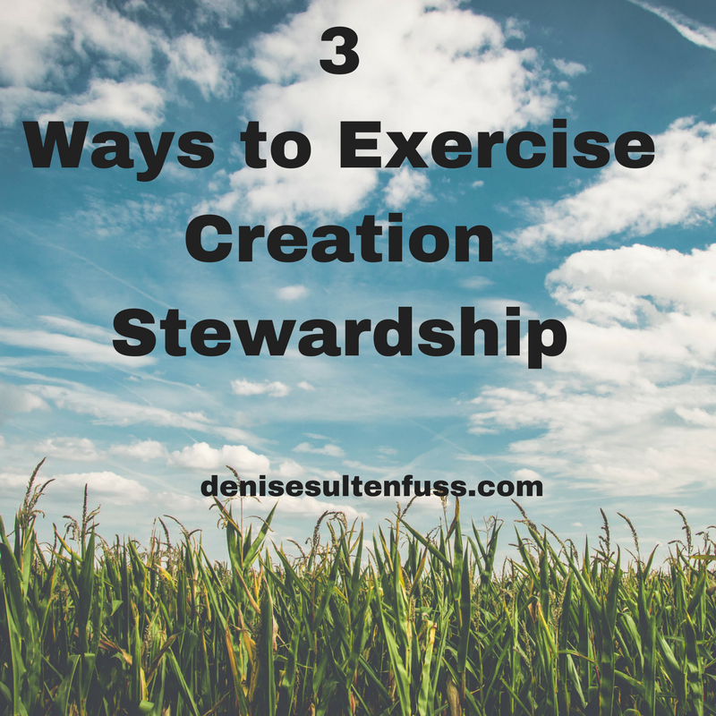 stewardship, creation care, environmental care