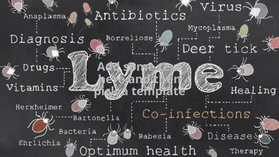 integrative solutions lyme disease